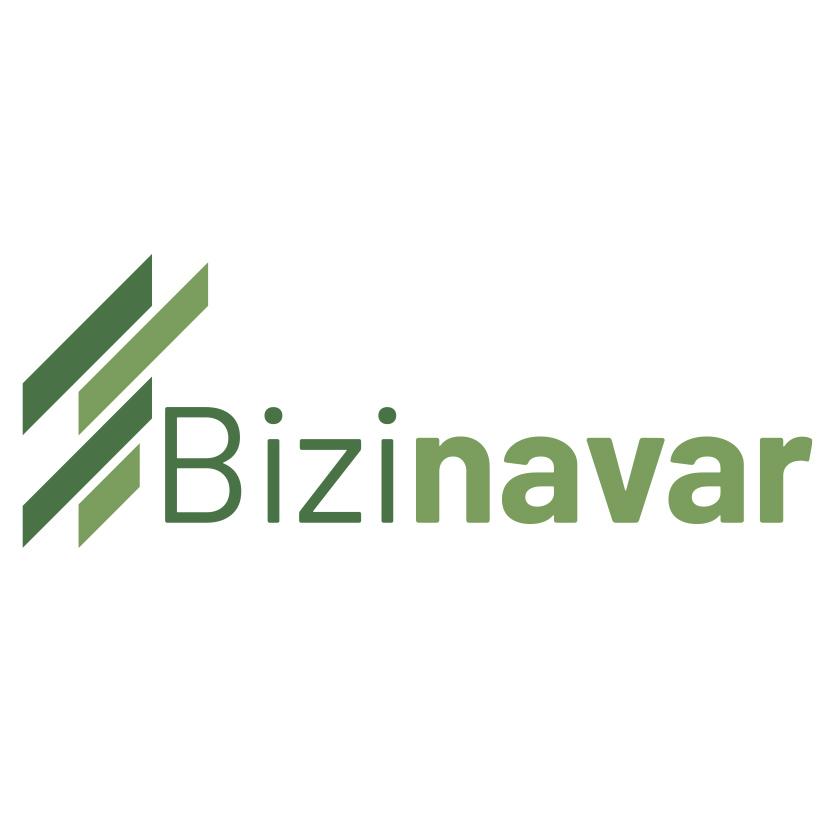 bizinavar_logo